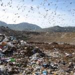 Consiglio straordinario rifiuti: il dibattito in aula